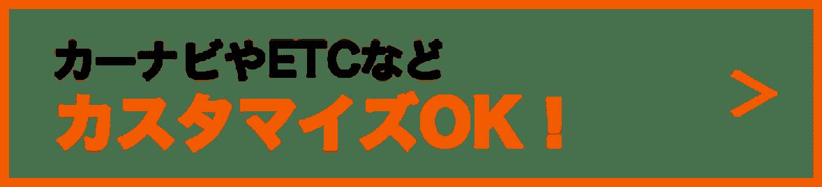 カーナビやETCなどカスタマイズOK!